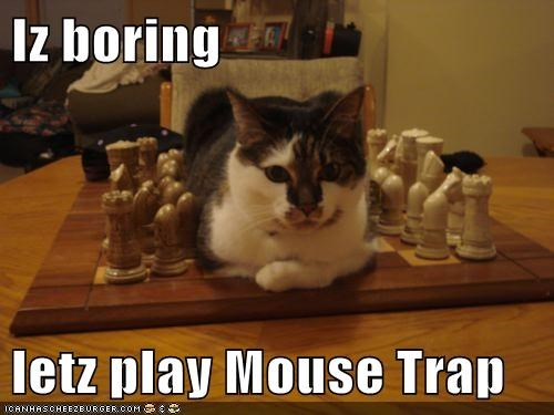 alternative,bored,boring,caption,captioned,cat,chess,mouse trap,preference,suggestion