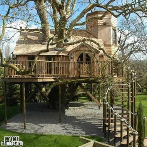 architecture design do want home tree house - 5565007360