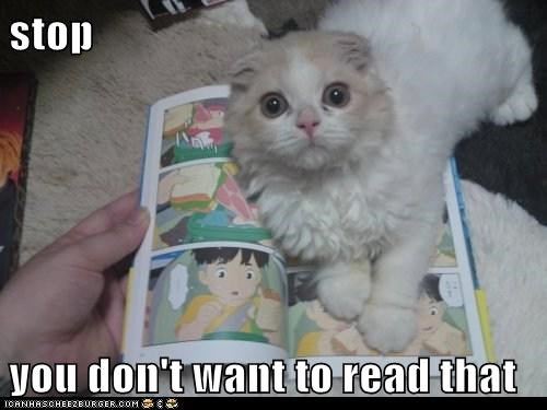 cat comic book I Can Has Cheezburger reading stop - 5566848512