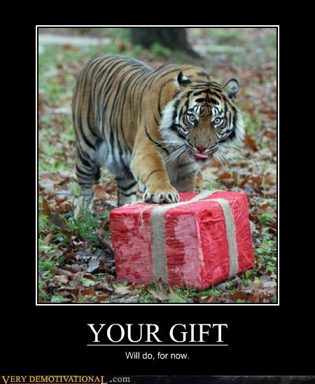 gift,hilarious,tiger,will do