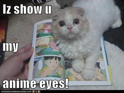 anime,caption,captioned,cat,eyes,I,imitation,impression,show,you