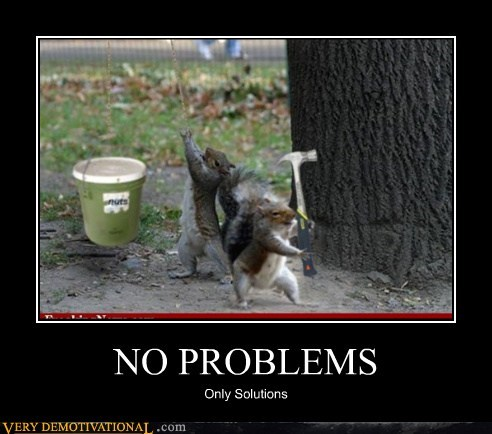 problems,Pure Awesome,solutions,squirrels