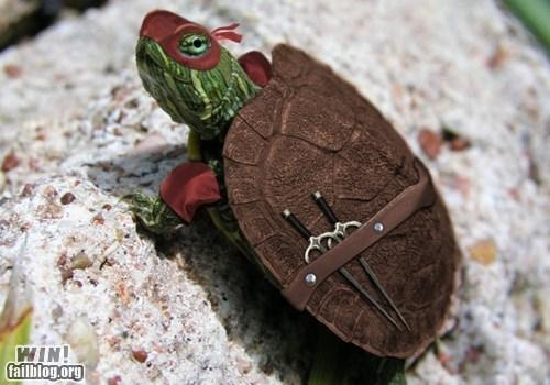 animal animals cartoons comic book cute Hall of Fame photoshop TMNT turtle - 5568469760