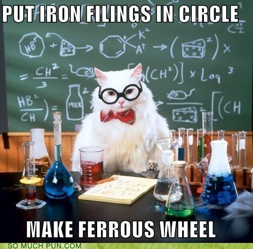2011 best of chemistry cat looking back meme - 5568640256