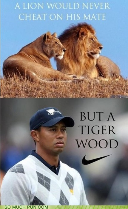 cheat comparison double meaning Hall of Fame lion literalism mate tiger Tiger Woods