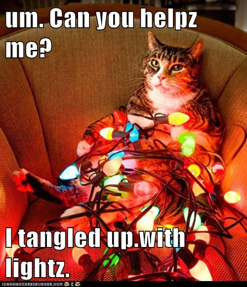 Um Can You Helpz Me I Tangled Up With Lightz Cheezburger Funny Memes Funny Pictures