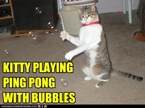 KITTY PLAYING PING PONG WITH BUBBLES