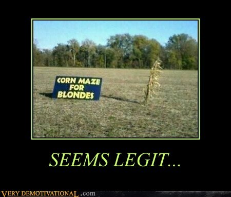 blondes corn hilarious maze seems legit - 5570334208