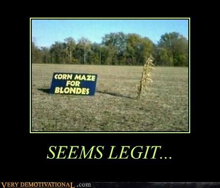 blondes corn hilarious maze seems legit - 5570334208