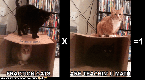 basic math,best of the week,caption,captioned,cat,Cats,education,fraction cats,fractions,I Can Has Cheezburger,math,math education,teaching