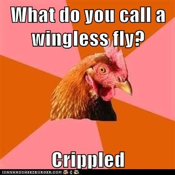 What do you call a wingless fly? Crippled
