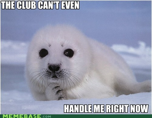 club,Lame Pun Coon,puns,seal
