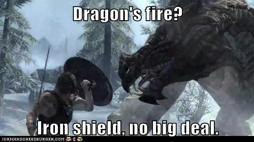 dragon,fire,no big deal,sheild,Skyrim,the elder scrolls,video games