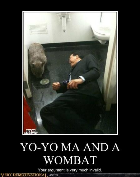 hilarious Wombat wtf Yo-Yo Ma - 5571218432