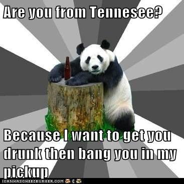 flirting,gross,panda,Pickup Line Panda,pickup lines,pickup trucks,tacky,Tennessee