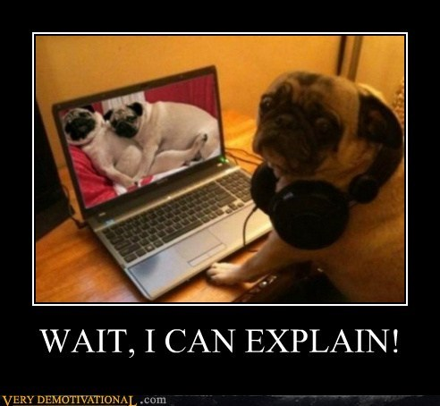 dogs headphones hilarious pr0n pug - 5571791104