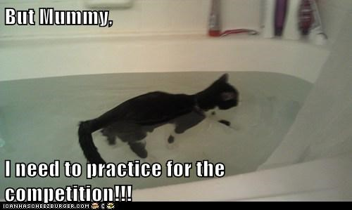 animals,awesome,awesome cat,bath tub,cat,I Can Has Cheezburger,practice,swim,swim practice,swimming,water