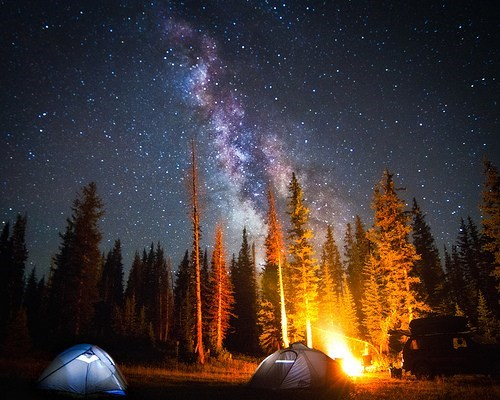camping,Forest,getaways,Hall of Fame,milky way,stars,trees,unknown location