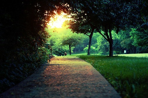 calming getaways park peaceful sidewalk trees unknown location - 5572259072