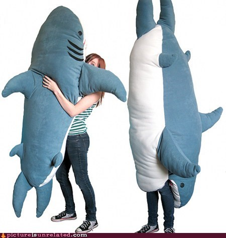 best of week killer Pillow shark wtf - 5572527616