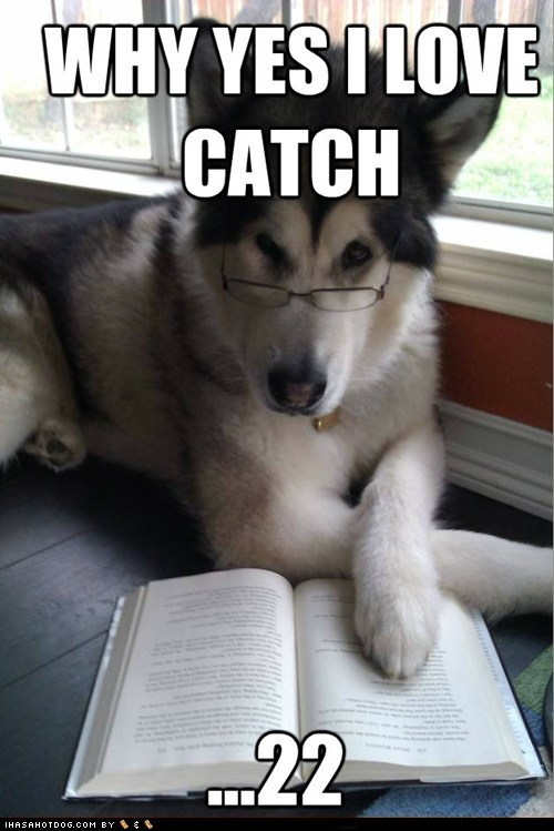 books,catch 22,Condescending Literary Pun Dog,huskies,husky,literature,puns,reading
