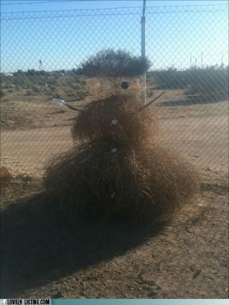 best of the week christmas snowman tumbleweed - 5572909056