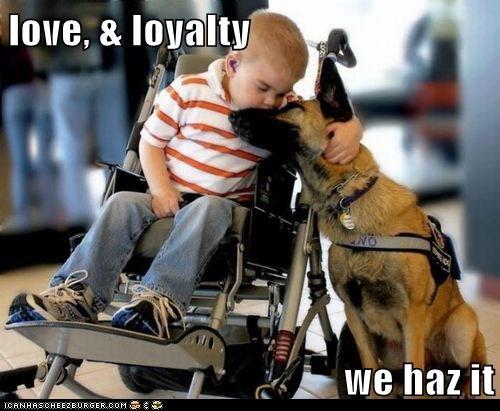 best of the week child friends friendship german shepherd Hall of Fame human i love you kid love service dog - 5572950784