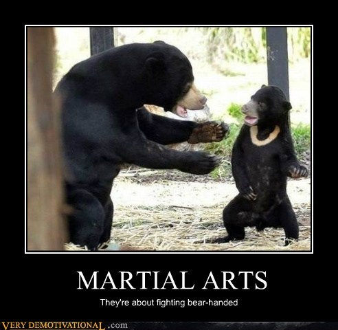 bears fight hilarious martial arts - 5573114368