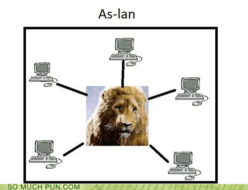 Local area network in Narnia