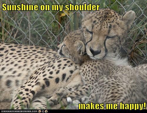 Sunshine on my shoulder  makes me happy!