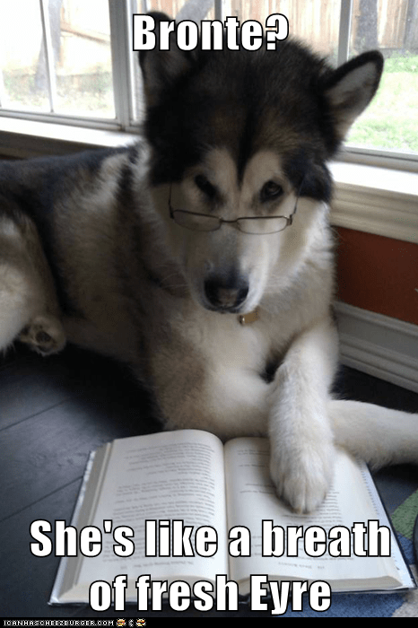 bronte sisters charlotte bronte Condescending Literary Pun Dog dogs jane eyre puns - 5573492992