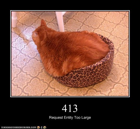 413,413 request entry too large,bed,cat,I Can Has Cheezburger,too big,too large,wont-fit