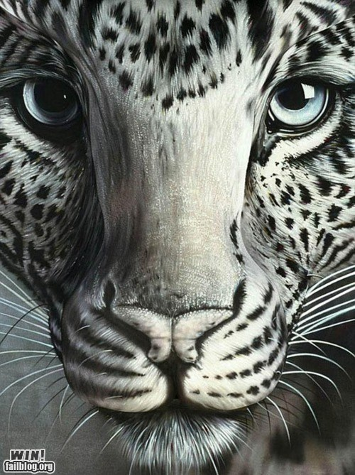 art,body paint,cat,clever,illusion,painting,pretty ladies