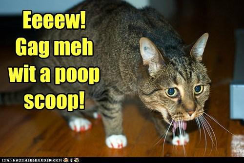 Eeeew! Gag meh wit a poop scoop!