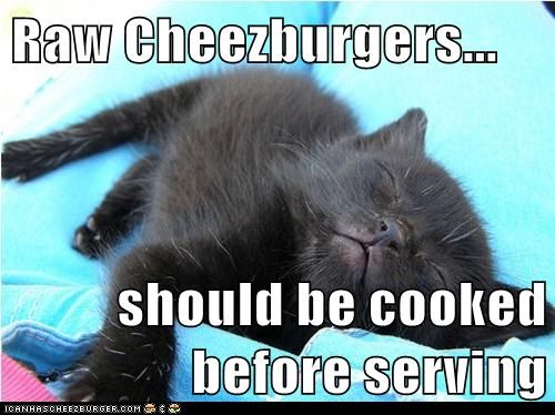 Cheezburger Image 5574733312