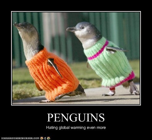 PENGUINS Hating global warming even more