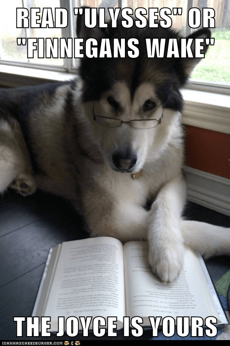 choice Condescending Literary Pun Dog dogs finnegans wake james joyce puns reading ulysses - 5576242432