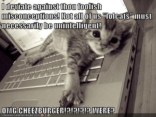 Cheezburger Image 5576926720