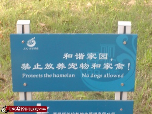 dogs engrish funny g rated pets signs translation Warning Sign Fails Warning Sign Wednesday - 5577456640