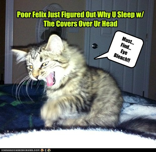 Poor Felix Just Figured Out Why U Sleep w/ The Covers Over Ur Head Must... Find... Eye Bleach!!