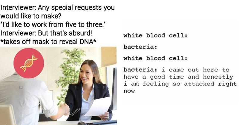Science memes, dank science memes, dna, scientists, guy fieri, white blood cells, tumblr, science.