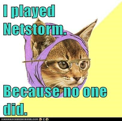 Cats,computer games,Hipster Kitty,hipsters,netstorm,video games