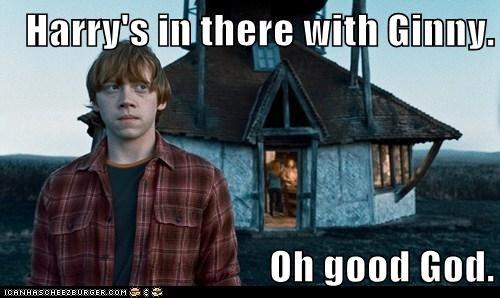harry Harry Potter Ron Weasley rupert grint sister - 5578766848