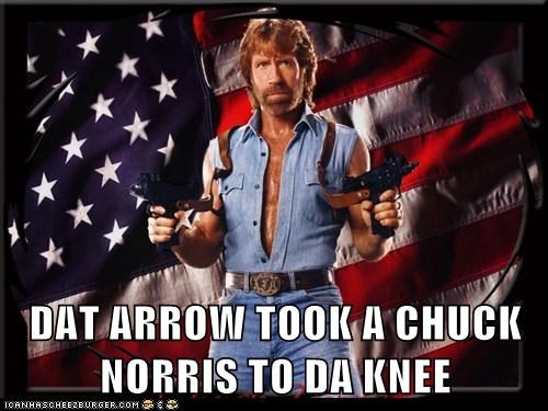 arrow arrow to the knee chuck norris roflrazzi Skyrim - 5579310336