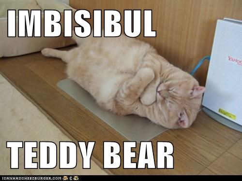 caption,captioned,cat,cuddling,invisible,sleeping,stuffed animal,tabby,teddy bear
