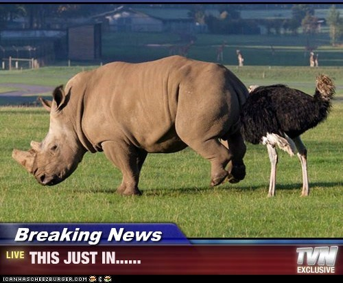 Breaking News - THIS JUST IN......