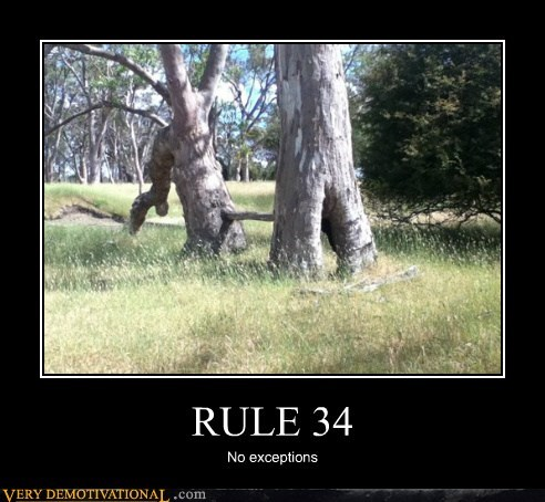 hilarious plants Rule 34 tree - 5579806464