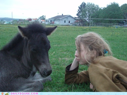 baby connect foal friends friendship horse human link rapport reader squees siblings spiritual - 5580598528
