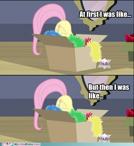 box fluttershy hearths-warming-eve meme serious then i was like - 5580769536