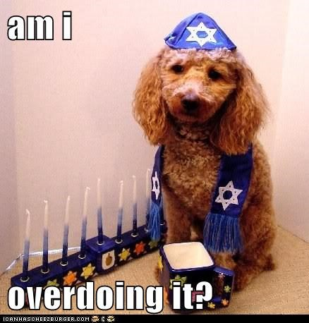chanukah hanukkah happy hanukkah labradoodle menorah mixed breed too much - 5580803072